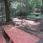Smith Creek Cabin #3 picnic area