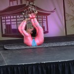 Franklin Squaare Chinese lantern festival -- Chinese acrobat