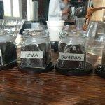 Five Elephants Specialty Coffee