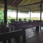 Foto de Amazon Tupana Lodge