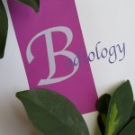 Bodiology Medical Spa & Body Retreat - Full service Medical Spa