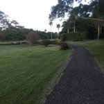 running at the golf course
