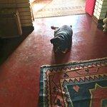 Photo de Kikili House
