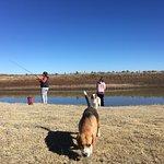 Photo de New Holme Karoo Guest Farm