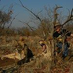 Photo de Livingstone Trails