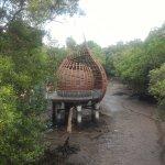 Billede af Sungei Buloh Wetland Reserve