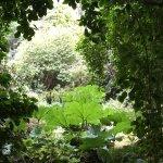 Photo of Arduaine Garden
