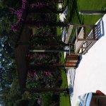 Photo of TUI BLUE Sarigerme Park