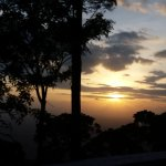 Foto de Golden Nest Resorts