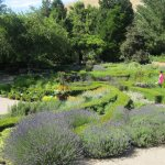 The Herb Garden at Red Butte Gardens