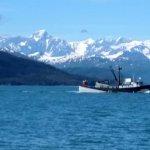 Photo de Whittier Marine Charters
