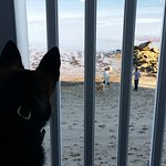 Surfside Hotel & Suites Foto