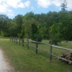 Foto di Kritter's Northcountry Campground & Cabins