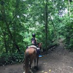 Photo of Discovery Horseback Tours