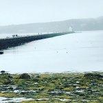 Foto de Samoset Resort On The Ocean