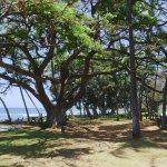 Photo de Launiupoko Beach Park