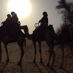 Desert safari in Dubai- chasing the sun and sands while the sun sets majestically in the horizon