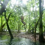 One of our group swinging from the rope swing in the mangrove!
