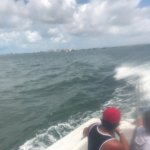 Photo of Dolphin Snorkeling Cruise