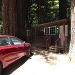 Cabin D - outside