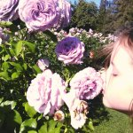 Stop to smell the roses!