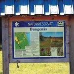 Bungenas Naturreservat in the south part of Farosund Fastning Farosund Sweden 1