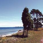 Bungenas Naturreservat in the south part of Farosund Fastning Farosund Sweden 2