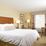 Photo of Hilton Garden Inn Atlanta West/Lithia Springs