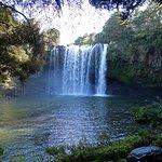 Photo of Rainbow Falls Walk