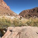 Atacama-Wüste Foto