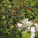 Relais & Chateaux Castel Fragsburg Foto