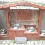 "The ""Doggie Bar"" at the Biergarten"