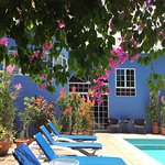 The Blue House Boutique Bed & Breakfast Foto