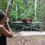 Natur- og dyrelivsture