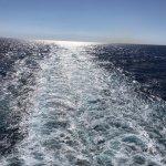 Photo of Malta5D