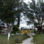 Foto de Beach Side Palms