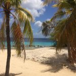 Plaza Resort Bonaire Photo