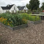 Den Engelska Tradgarden (The English Garden)