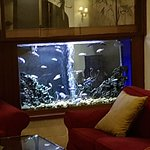 Hotel Mitzpe Hayamim Photo