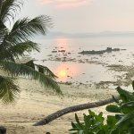 Photo of Rimba Resort