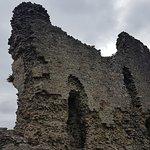 Montgomery Castle Foto