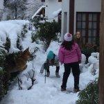 Paisaje soñado con la nevada!
