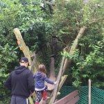 Vogelpark Marlow Foto