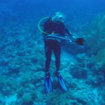 Diving with Ocean College