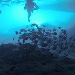 blue lagun curacao