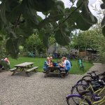 The orchard at Yarde - relax..