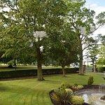 Lucious Green Garden