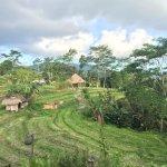 Photo of Sawah Indah Villa