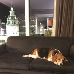 Foto de Trump International Hotel & Tower Chicago