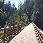 Coquihalla Canyon Provincal Park